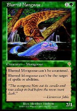 Blurred Mongoose