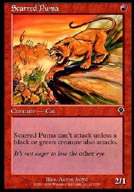Puma Marcado