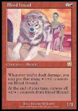 Perro de sangre