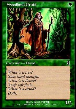 Druida del bosque