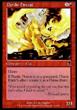 Gato de fuego pardico