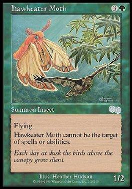 Hawkeater Moth