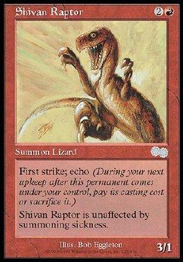 Raptor shivano