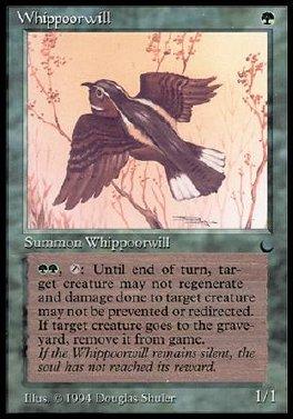 Whippoorwill