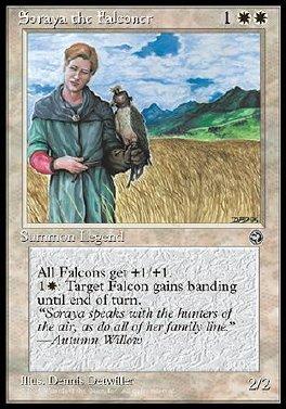 Soraya the Falconer